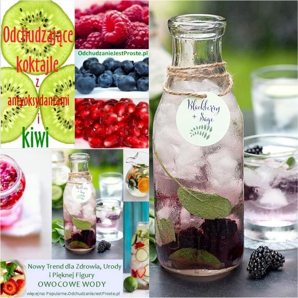 popularne.odchudzaniejestproste.pl-domowe-sposoby-na-zdrowie-odchudzanie-owocowe-wody-antyoksydanty-jeżyna-kiwi